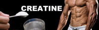 Kreatin / Creatine